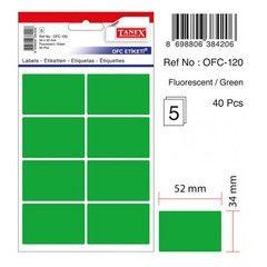 Etichete color autoadezive,  8/A4, 99.1 x 67.7mm, 25 coli/top, TANEX - verde fluorescent