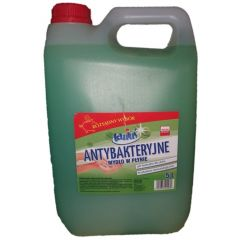Sapun lichid, 5 litri, antibacterian, PH-neutru, Tanius - verde